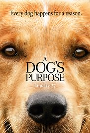 dog's purpose